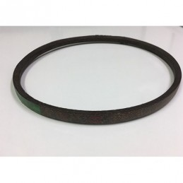52302 WALKER MS (SD) Belt...
